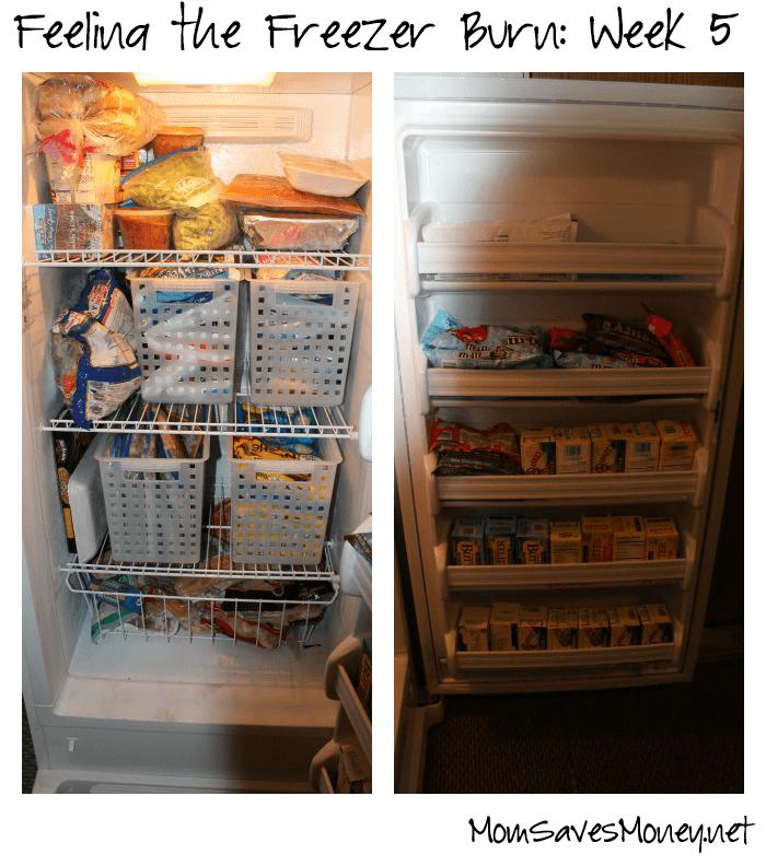 freezerburnweek5