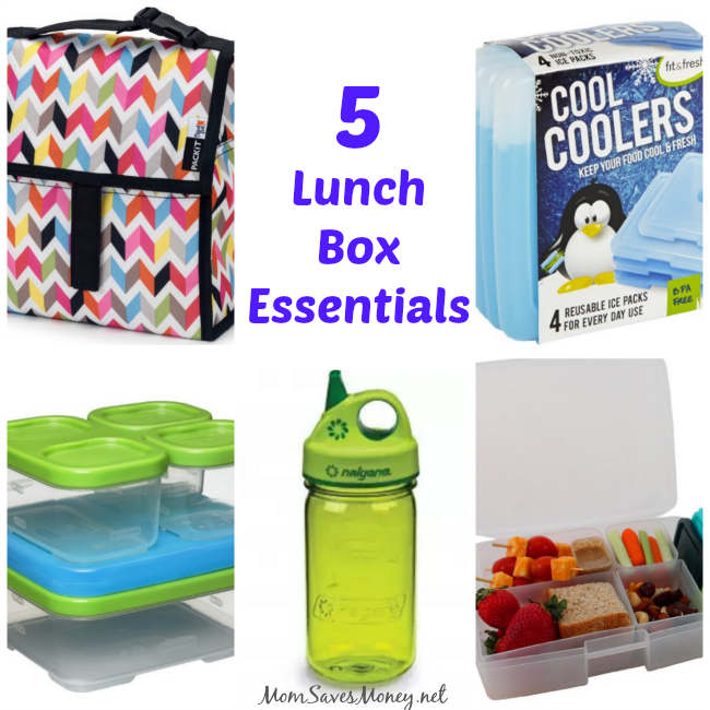 top 5 lunch box essentials