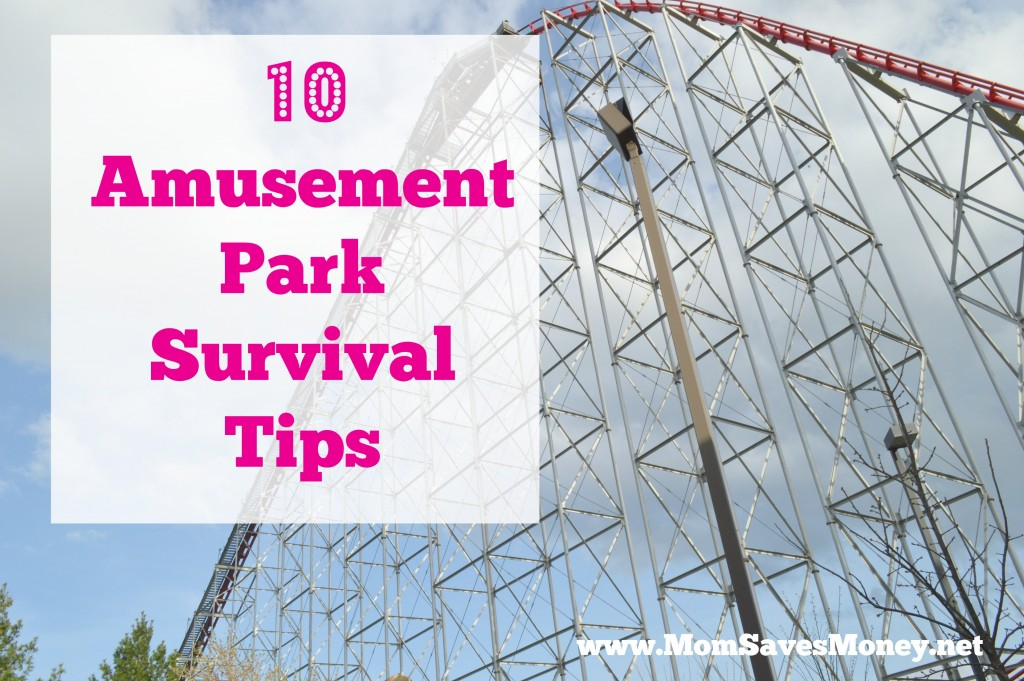 amusement park tips 2