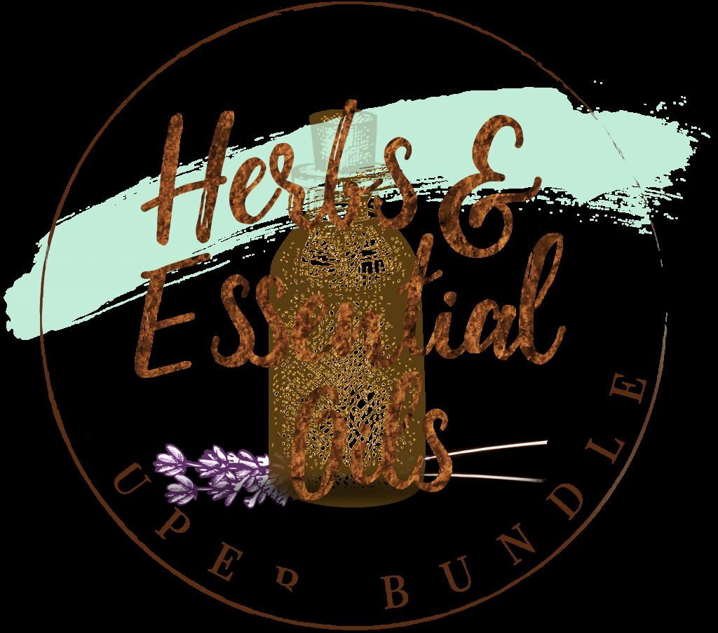 HEO_Circle_Logo