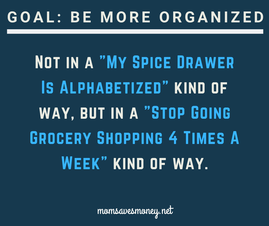 Goal: Be More organized. Not in a My spice drawer is alphabetized kind of way, but in a stop going grocery shopping 4 times a week kind of way.