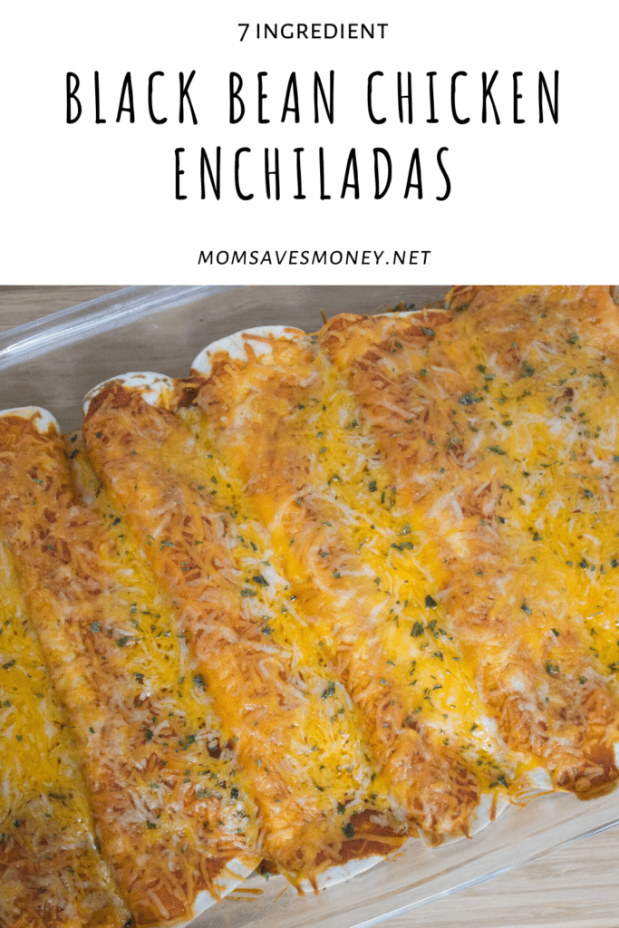 black bean chicken and cream cheese enchiladas in glass casserole dish